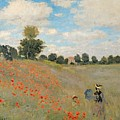 Wild Poppies near Argenteuil by Claude Monet