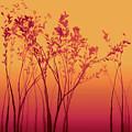 Wild Raspberry by Susan Maxwell Schmidt