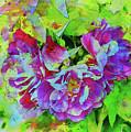Wild Roses 3 by Malanda Warner