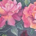 Wild Roses by Barbara King
