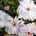 Wild Roses by Karen Stark