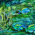 Wild Sargasso Sea by Carol Cavalaris