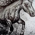 Wild Stallion by Elizabeth Robinette Tyndall