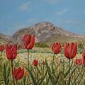 Wild Tulips In Central Crete by David Capon