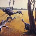 Wild Turkeys by Judy Michael Myers