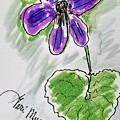 Wild Violet  by Geraldine Myszenski