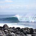 Wild Wave by Chad Natti