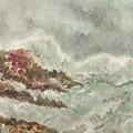 Wild   Waves by Amrita Banerjee