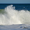 Wild Waves by Dianne Cowen