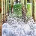 Wild Waves Under The Boardwalk by Elizabeth Dow