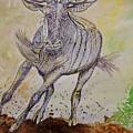 Wildebeest by Caroline Street