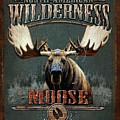 Wilderness Moose by JQ Licensing