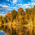 Wilderness Pond - Paint by Steve Harrington