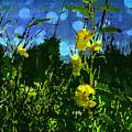 Wildflower Field by Shawna Rowe
