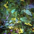 Wildflower Impression 4859 Idp_2 by Steven Ward