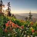 Evening Kisses by Idaho Scenic Images Linda Lantzy