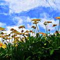 Wildflowers 11318 by Ray Shrewsberry