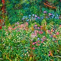 Wildflowers Near Fancy Gap by Kendall Kessler