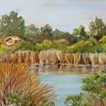 Wildlife Preserve by Shari Jones