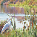 Wildlife Refuge by Sue Zimmermann