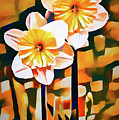Wildly Abstract Daffodil Pair by Anita Pollak