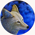 Wiley Coyote by Brian  Commerford