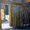 Williamsburg Barn by Beverly Hanni