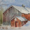 Williston Barn by Carol Mueller