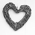Willow Heart by Helen Northcott