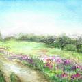Willow-herb by Yana Sadykova