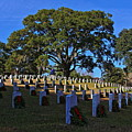 Wilmington National Cemetery Christmas by Rand Wall