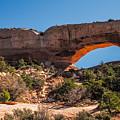 Wilson Arch by Paul Freidlund