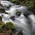 Wilson Creek #15 by Ben Upham III