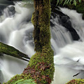 Wilson Creek #17 by Ben Upham III