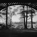 Wilson Pond Framed In Black And White by MTBobbins Photography