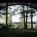 Wilson Pond Framed by MTBobbins Photography