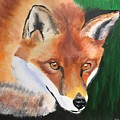 Wily Fox by Kathi Schwan