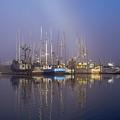 Winchester Bay Fishing Boats by Robert Potts