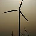 Wind Farm by Alan Look