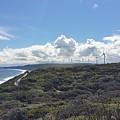 Wind Farm by Ruby Kok