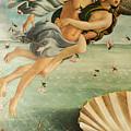 Wind God Zephyr by Sandro Botticelli