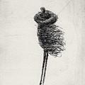 Wind II by Valdas Misevicius