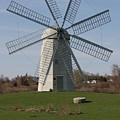 Wind Mill by Robert Torkomian