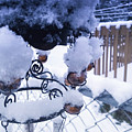 Wind Snow Chimes by Robert Knight