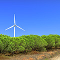 Wind Turbines Landscape by Benny Marty