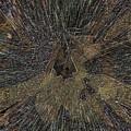Windblown by Tim Allen