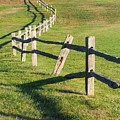 Winding Fences by Robin Zygelman
