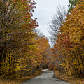 Winding Road Of Awenda by Marj Dubeau