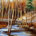 Winding Stream by Carole Spandau