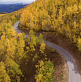 Winding Through Fall by Wesley Aston